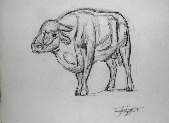 Gaston SUISSE (1896-1988) - Taureau.