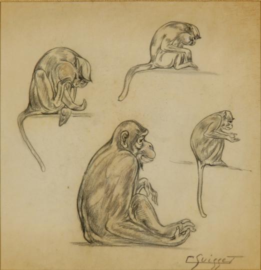Gaston SUISSE (1896-1988) - Certhopitèques.