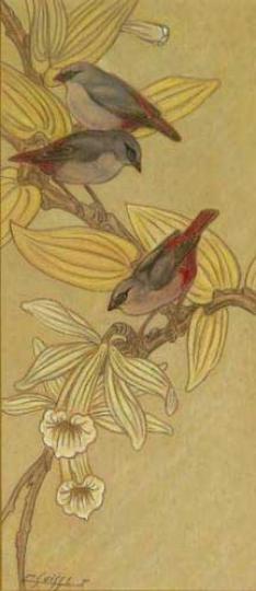 Gaston SUISSE (1896-1988) - Astrid dans les fleurs de vanille