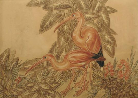 Gaston SUISSE (1896-1988) - Les ibis roses 1931